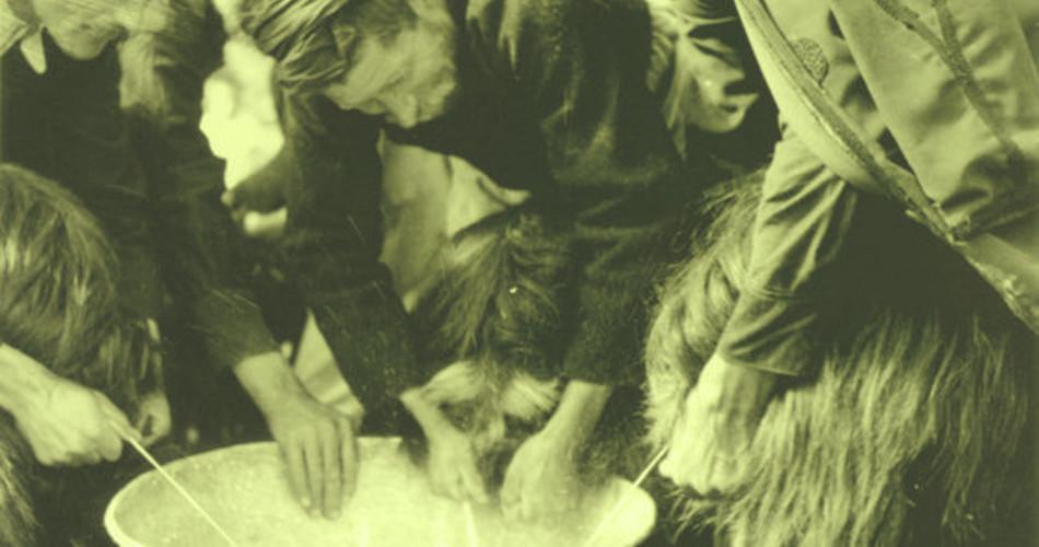 Γαλακτοκομική Κρήτης ΑΕ (Α.Μ.001)