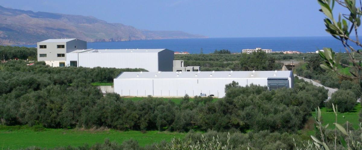 Terra Creta ΑΒΕΕ  (Α.Μ.051)